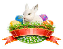 Easter Bunny Rabbit In Basket With Eggs Royalty Free Stock Image