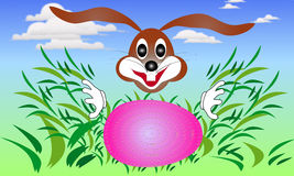 Easter bunny rabbit looking for eggs in the grass Royalty Free Stock Image