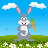 Easter Bunny Rabbit in a Meadow Royalty Free Stock Photo