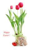Easter bunny rabbit with painted Easter eggs and Tulips. Stock Photography