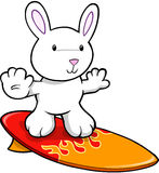 Easter Bunny Rabbit surfing Royalty Free Stock Images
