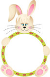 Easter Bunny with Round Frame Royalty Free Stock Photos