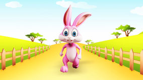 Easter Bunny running stock video