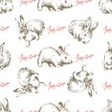 Easter bunny seamless background Stock Photography