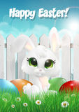 Easter bunny siting on a grass among Easter eggs, white wooden fence Stock Images