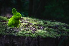 Easter bunny is sitting on a tree trunk stock image