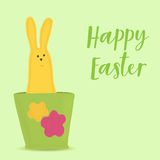 Easter bunny sitting in pot Royalty Free Stock Photo