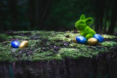 Easter bunny is sitting on a tree trunk royalty free stock photos