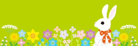 Easter bunny in the spring flower bed -green color background, horizontal, copy space layout design.  vector illustration