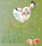 Easter bunny, spring postcard on green Stock Image