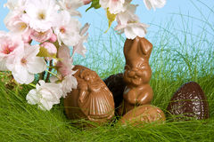 Easter bunny in springtime Stock Images