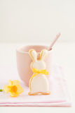 Easter bunny sugar cookie Royalty Free Stock Photo