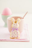 Easter bunny sugar cookie Stock Image