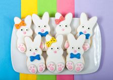Easter Bunny Sugar Cookies on a rectangular plate with napkins underneath. Marshmallow fondant covered cookie with candy feet, eyes and nose and tail and bows royalty free stock photo