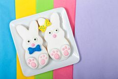 Easter Bunny Sugar Cookies on a square plate with napkins underneath. Marshmallow fondant covered cookie with candy feet, eyes and nose and tail and bows. Boy royalty free stock photos