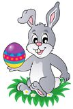 Easter bunny theme image 1 Stock Photography