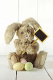 Easter Bunny Themed Holiday Occasion Image Stock Photography