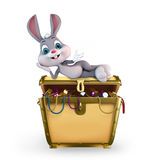 Easter Bunny with treasure box Royalty Free Stock Photo
