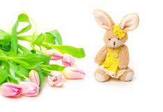 Easter Bunny, tulips Stock Image