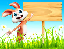 Easter bunny with wooden sign and flowers Stock Image
