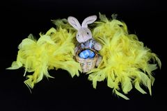 Easter Bunny on yellow feathers and painted Egg. In wooden basket, black background Stock Photography