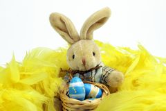 Easter Bunny on yellow feathers and painted Egg in wooden basket. Easter Bunny on yellow feathers and painted eggs in wooden basket on white background Royalty Free Stock Images