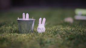 Easter bunnyes