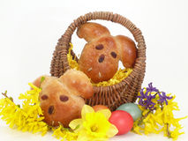 Easter bunnys Royalty Free Stock Image