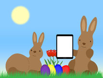 Easter Bunnys with Tablet Computer Easter Eggs and tulip  Stock Photography