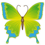 Easter butterfly Royalty Free Stock Photography