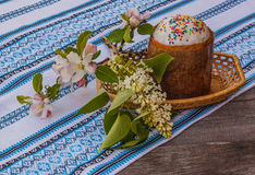 Easter cake and apple blossom branch Royalty Free Stock Photos