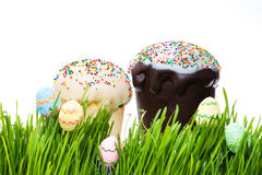Easter cake and easter egg hiding in the grass Royalty Free Stock Photo