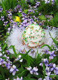 Easter cake on the grass and flowers Stock Photo