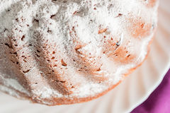 Easter cake with icing sugar and raisins Stock Image