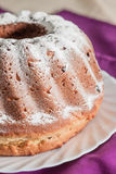 Easter cake with icing sugar and raisins Stock Images