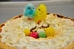 Easter cake with a lovey chickens. Easter cake with a lovely chickens in blue and yellow colours for celebrate Easter with family royalty free stock photo