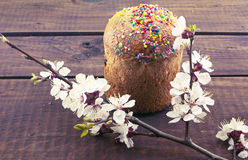 Easter cake on rustic wooden table with blossom apricot branches Royalty Free Stock Photography