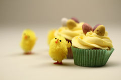 Easter cakes with chicks Royalty Free Stock Photos