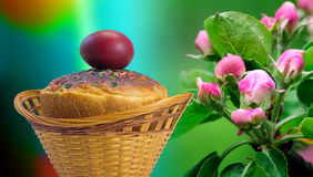 Easter cakes and red Easter egg beside a blossoming Apple tree. Royalty Free Stock Image