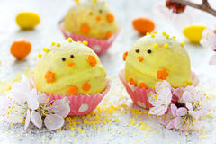 Easter candy cake pops Stock Images