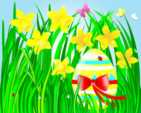 Easter card. Easter egg with a bow in the green grass with beautiful daffodils and butterflies, ladybugs and a drop of dew Stock Image