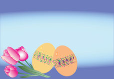 Easter card. Two easter eggs and three pink tulips on the blue background Stock Photos