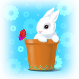 Easter  card. Small rabbit in the earthenware and a  butterfly Royalty Free Stock Image