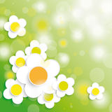 Easter Card Background Big White Flowers. Colored easter background with flowers. Eps 10  file Royalty Free Stock Photo