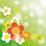Easter Card Background Colored and White Flowers Stock Image