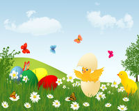 Easter card with chicken. Easter card with chicken and butterflies Stock Photos