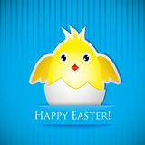 Easter card with chicken that hatched from egg Stock Image