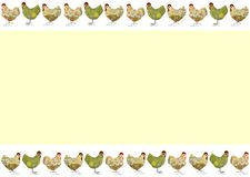 Easter card with chickens. Yellow greeting card with chickens border on white Royalty Free Stock Photography