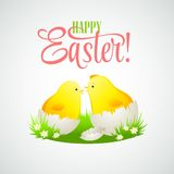 Easter card with chickens and eggs. Vector Royalty Free Stock Image