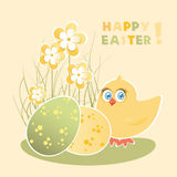Easter card with chicks and eggs Royalty Free Stock Photos